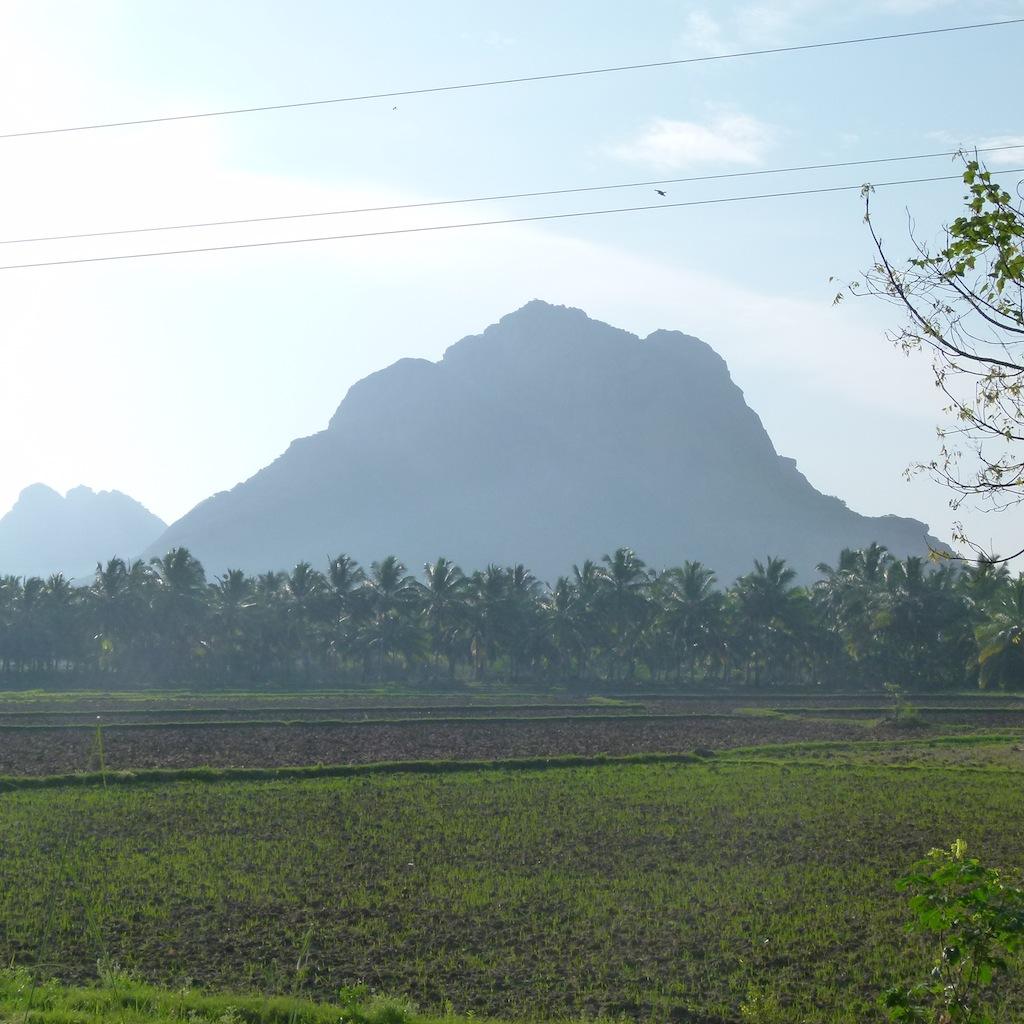 Viajar a India por Daniel González, Tamil Nadu, Mayo de 2015.