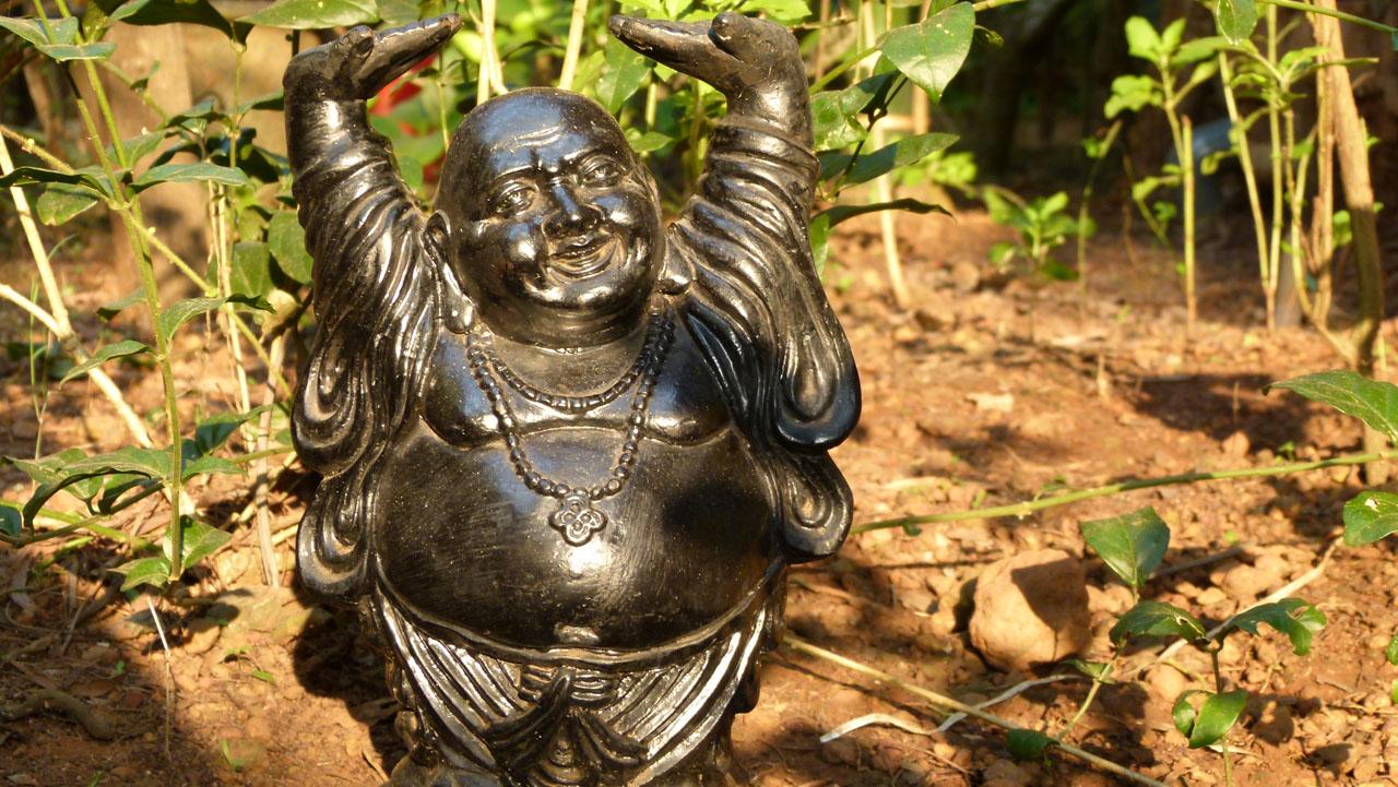 Retiro en Buddhas Garden Goa