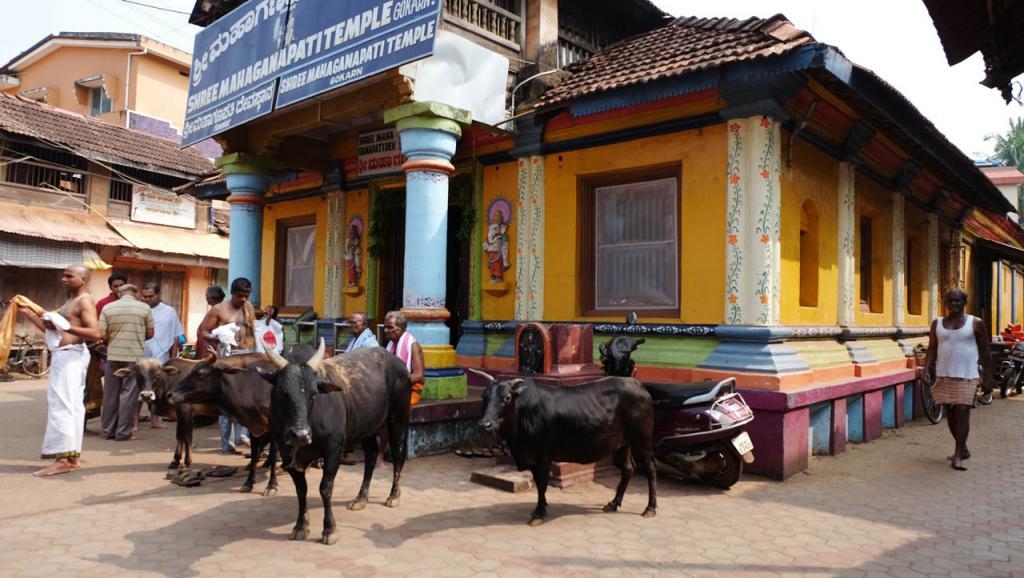 Retiro en India: Swaswara